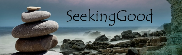 blog-seekinggood-marquis-02-text