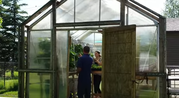 Stafeldts in Greenhouse.png