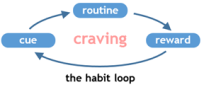 habit loop 3 - small.png