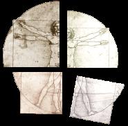 SHE04 vetruvian segments - SMALL