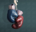 Election Day 2014 - Republicans and Democrats in the campaign